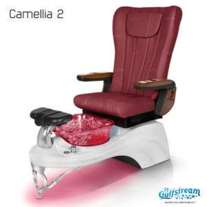 Camellia 2_Octbr2019_11